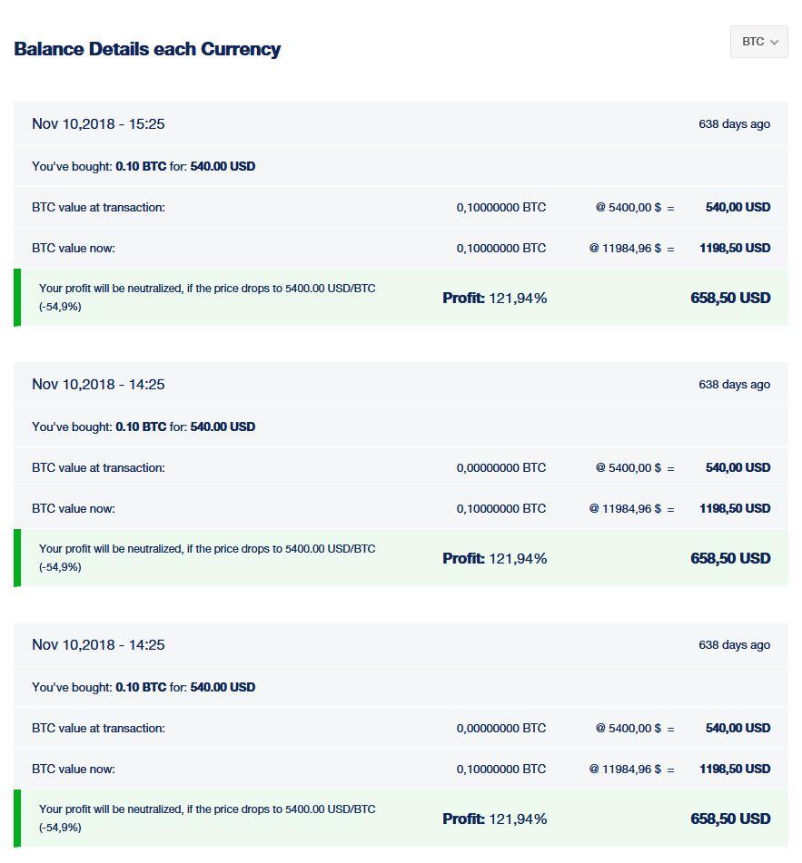 Screenshot - Ausarbeitung Bitcoin Trades für das Finanzamt