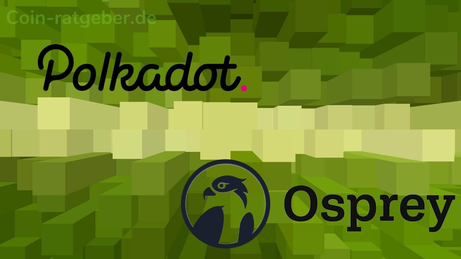 Polkadot Osprey