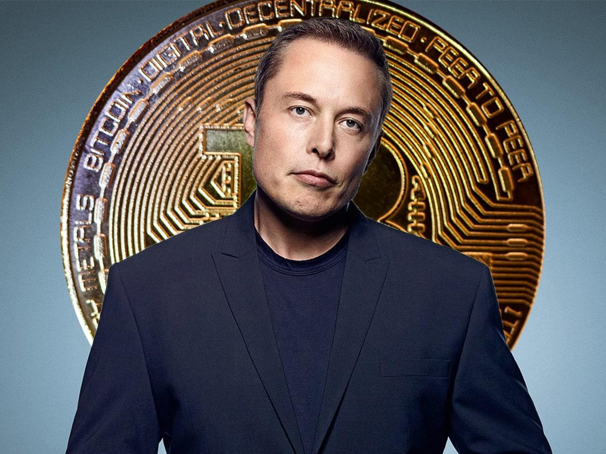 Elon Musk Bitcoin Hodler