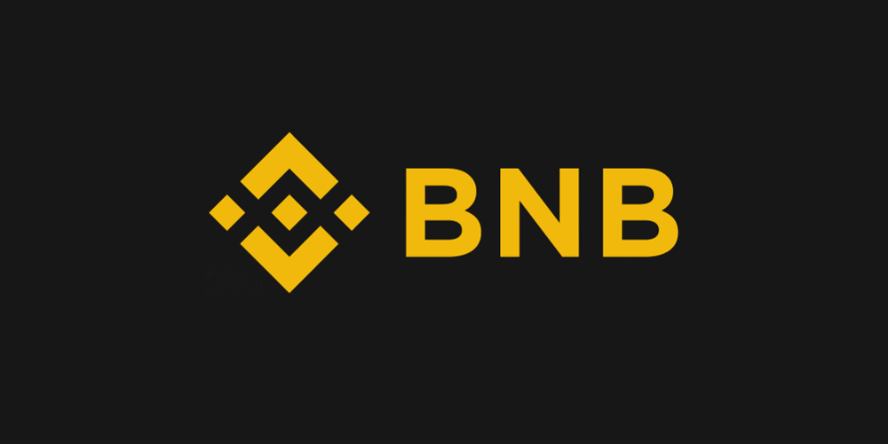 Was ist Binance Coin BNB / Binance Chain?
